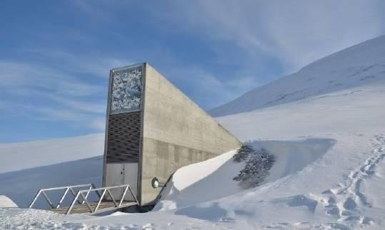 svalbard küresel tohum deposu norveç