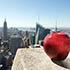 New York Şehrini Tanıyalım